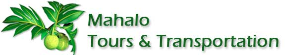 Mahalo Tours & Transportation